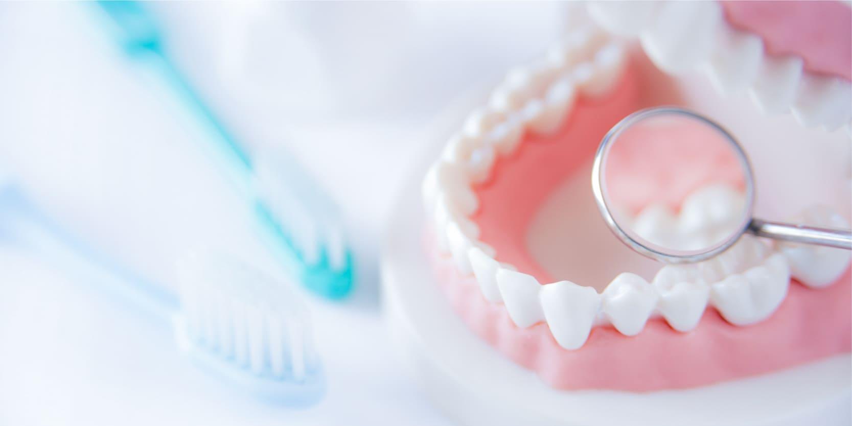 歯周病治療の原因から治療します